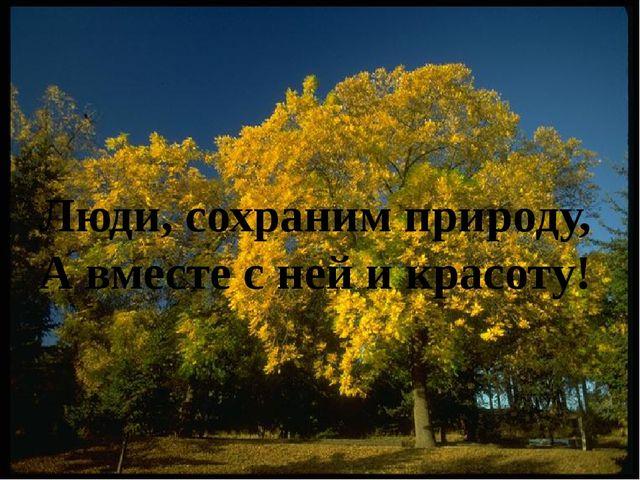Люди, сохраним природу, А вместе с ней и красоту!