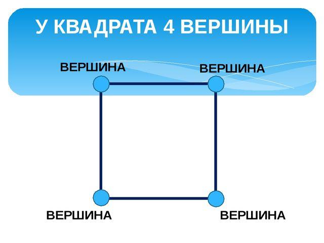 У КВАДРАТА 4 ВЕРШИНЫ ВЕРШИНА ВЕРШИНА ВЕРШИНА ВЕРШИНА