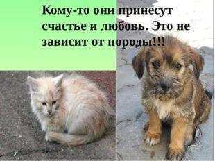 Кому-то они принесут счастье и любовь. Это не зависит от породы!!!