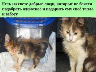 Есть на свете добрые люди, которые не боятся подобрать животное и подарить ем
