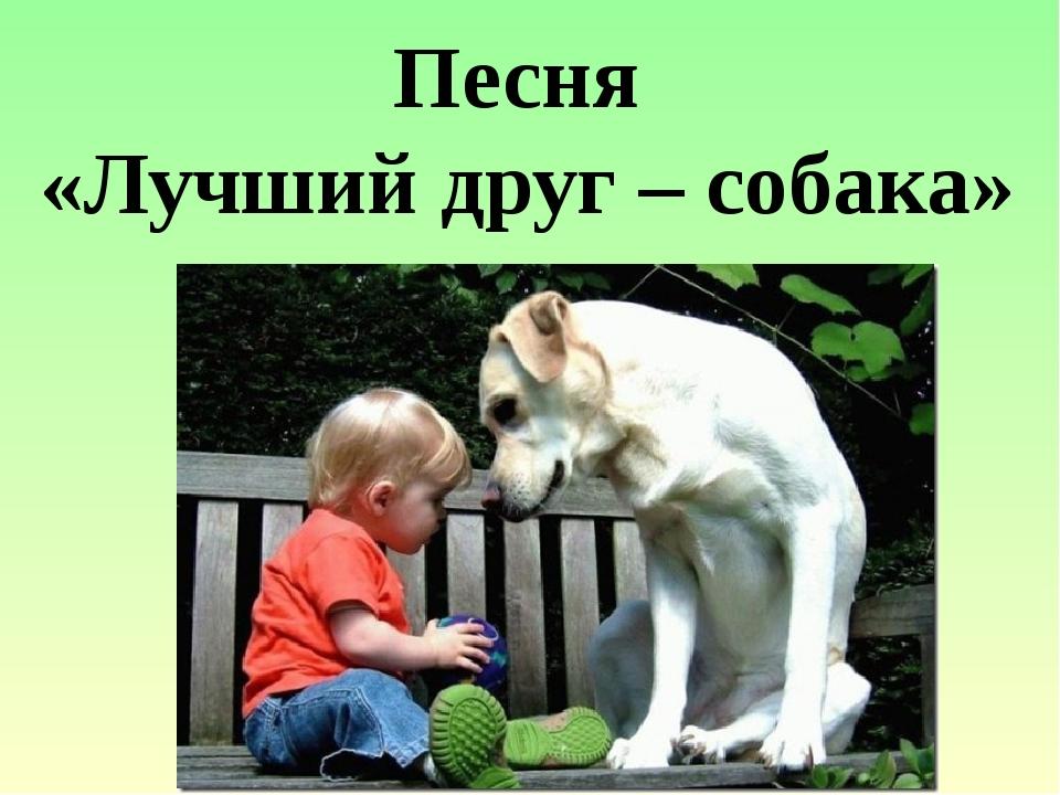 Песня «Лучший друг – собака»