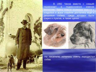 В 1892 Чехов вместе с семьёй переезжает в подмосковное имение Мелихово. Здес