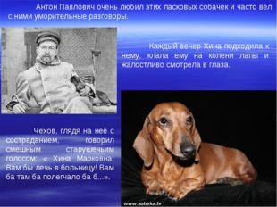 Антон Павлович очень любил этих ласковых собачек и часто вёл с ними уморител