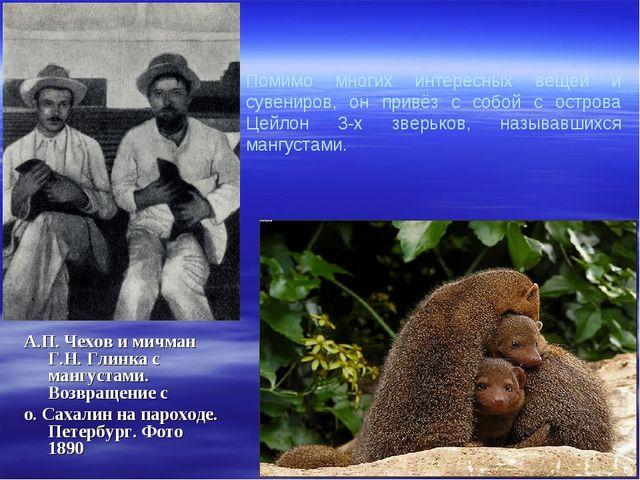 Помимо многих интересных вещей и сувениров, он привёз с собой с острова Цейло...