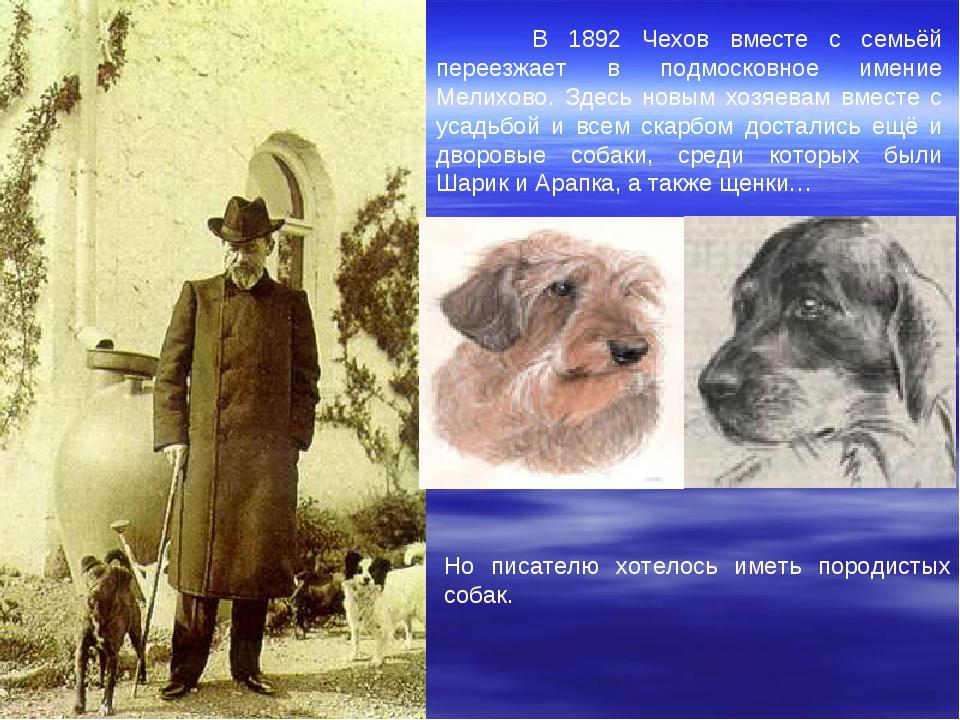 В 1892 Чехов вместе с семьёй переезжает в подмосковное имение Мелихово. Здес...