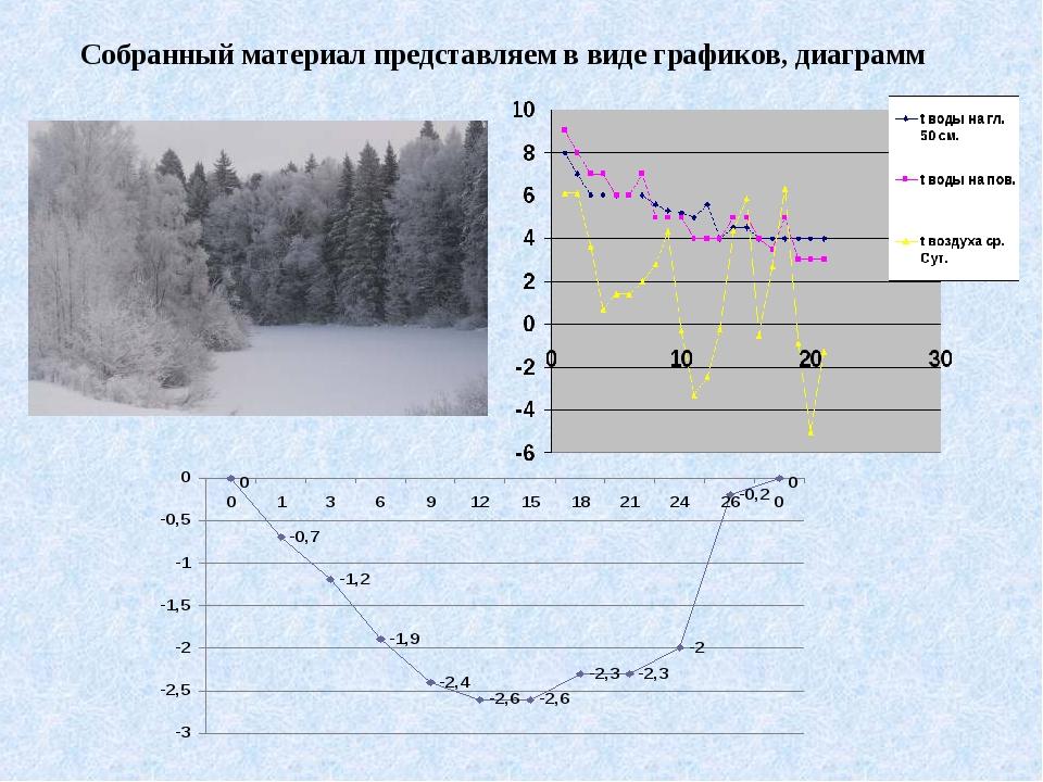 Собранный материал представляем в виде графиков, диаграмм