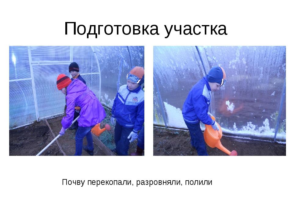 Подготовка участка Почву перекопали, разровняли, полили