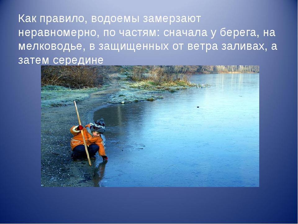 Как правило, водоемы замерзают неравномерно, по частям: сначала у берега, на...