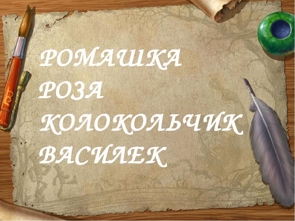 РОМАШКА РОЗА КОЛОКОЛЬЧИК ВАСИЛЕК