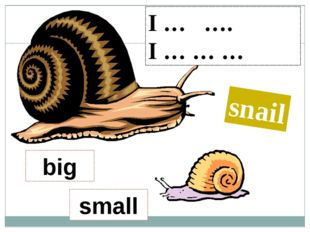 I … …. I … … … snail big small