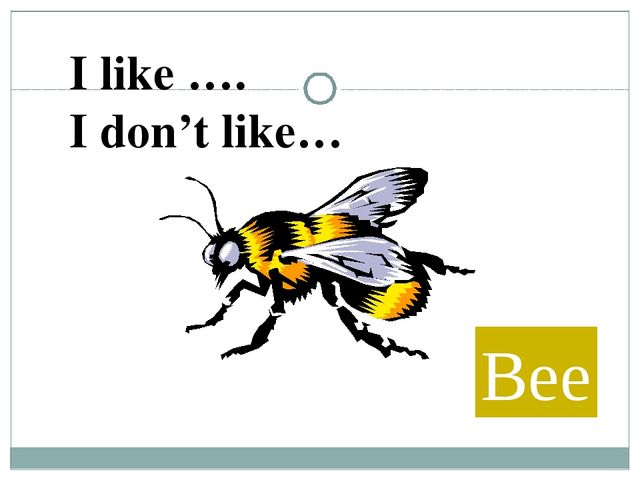 Bee I like …. I don't like…