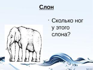 Слон Сколько ног у этого слона?