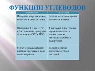 ФУНКЦИИ УГЛЕВОДОВ Энергетическая Строительная Исходноеэнергетическое вещества