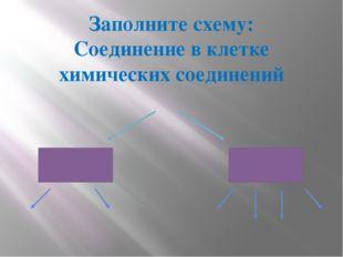 Заполните схему: Соединение в клетке химических соединений