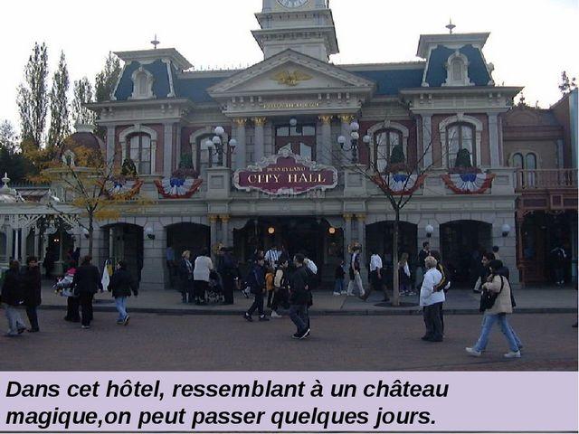 Dans cet hôtel, ressemblant à un château magique,on peut passer quelques jou...