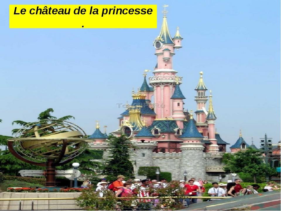 Le château de la princesse .