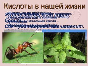 Кислоты в нашей жизни Есть в муравьях и крапиве невинная, С пользой для нас –