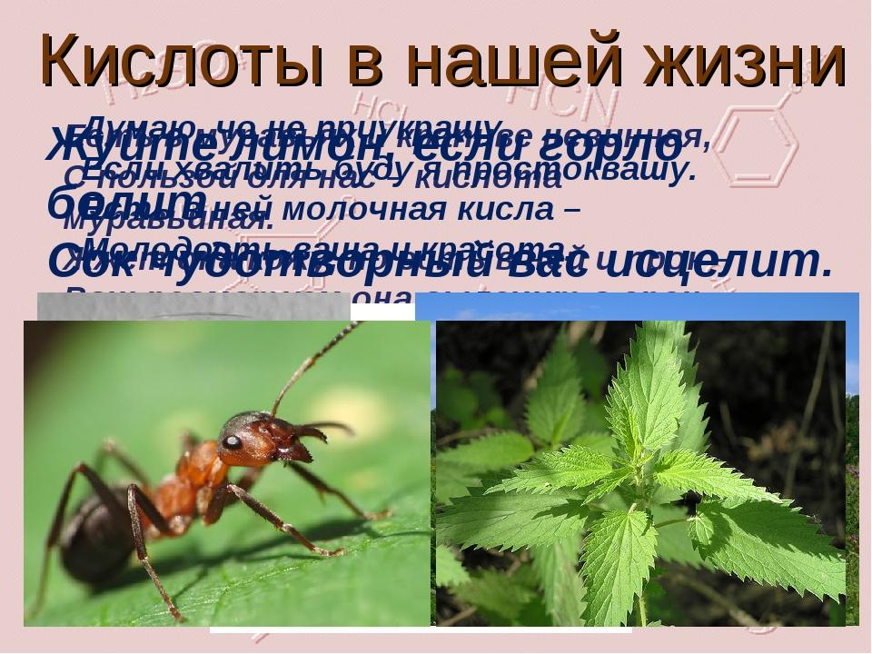 Кислоты в нашей жизни Есть в муравьях и крапиве невинная, С пользой для нас –...