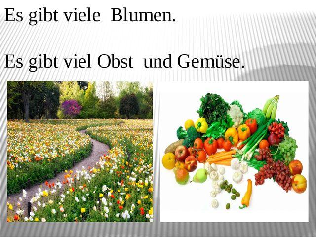 Es gibt viele Blumen. Es gibt viel Obst und Gemüse.