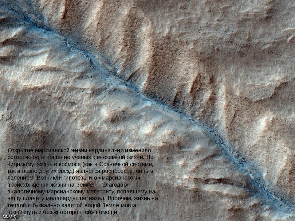 Открытие марсианской жизни кардинально изменило осторожное отношение ученых к...
