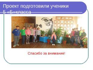 Проект подготовили ученики 5 «Б»класса Спасибо за внимание!
