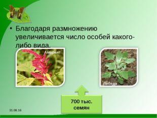 Благодаря размножению увеличивается число особей какого-либо вида. *