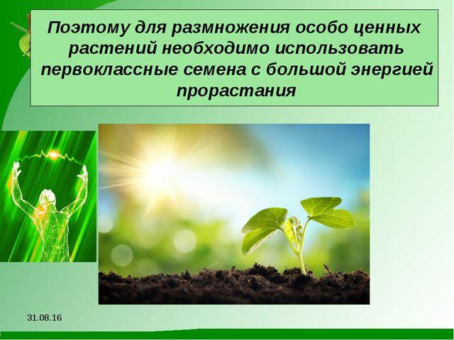 Поэтому для размножения особо ценных растений необходимо использовать первокл...
