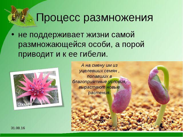 Процесс размножения не поддерживает жизни самой размножающейся особи, а порой...