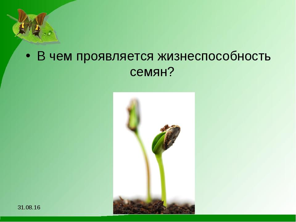В чем проявляется жизнеспособность семян? *