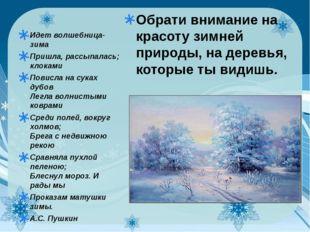 Обрати внимание на красоту зимней природы, на деревья, которые ты видишь. Ид
