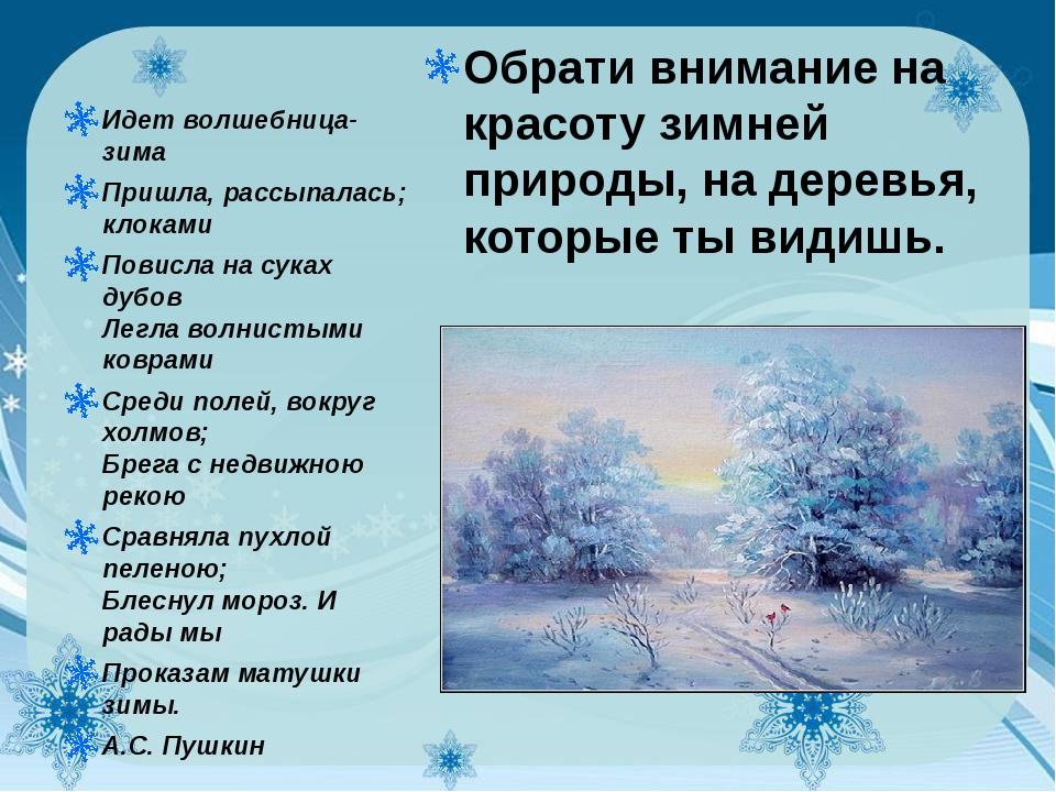 Обрати внимание на красоту зимней природы, на деревья, которые ты видишь. Ид...
