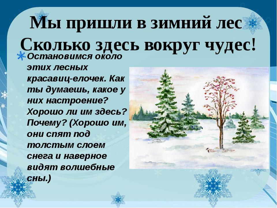 Мы пришли в зимний лес Сколько здесь вокруг чудес! Остановимся около этих ле...