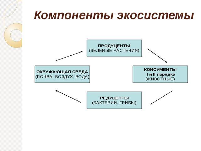 Компоненты экосистемы
