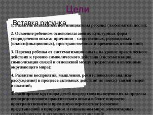 Цели 1. Развитие познавательной инициативы ребенка (любознательности); 2. Ос
