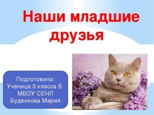 Наши младшие друзья Подготовила: Ученица 3 класса Б МБОУ СЕНЛ Буденкова Мария
