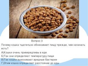 Вопрос 3 Почему кошка тщательно обнюхивает пищу прежде, чем начинать есть? А