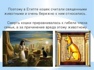 Поэтому в Египте кошек считали священными животными и очень бережно к ним от