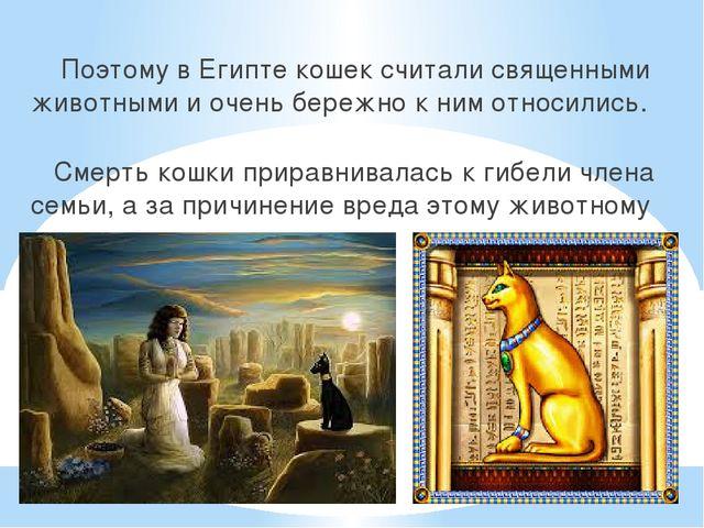 Поэтому в Египте кошек считали священными животными и очень бережно к ним от...