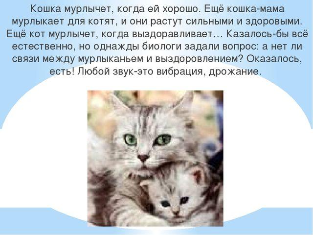 Кошка мурлычет, когда ей хорошо. Ещё кошка-мама мурлыкает для котят, и они ра...