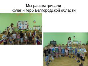 Мы рассматривали флаг и герб Белгородской области