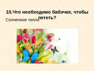 10.Что необходимо бабочке, чтобы лететь? Солнечное тепло