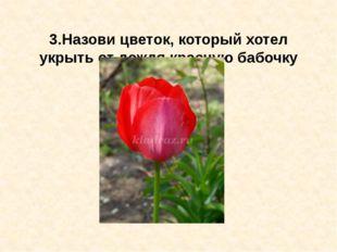3.Назови цветок, который хотел укрыть от дождя красную бабочку