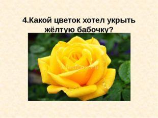 4.Какой цветок хотел укрыть жёлтую бабочку?