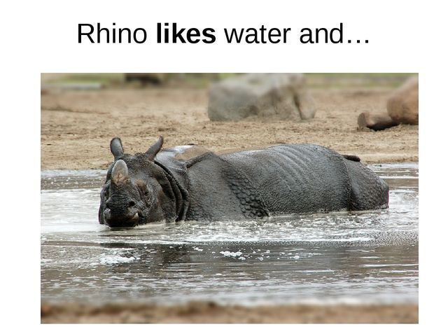 Rhino likes water and…