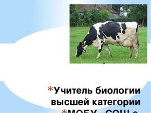 Учитель биологии высшей категории МОБУ «СОШ с. Отважное» Мельник Надежда Викт