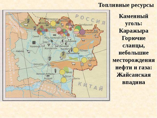 Топливные ресурсы Каменный уголь: Каражыра Горючие сланцы, небольшие месторож...
