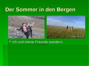Der Sommer in den Bergen Ich und meine Freunde wandern.