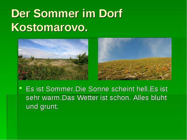 Der Sommer im Dorf Kostomarovo. Es ist Sommer.Die Sonne scheint hell.Es ist s...