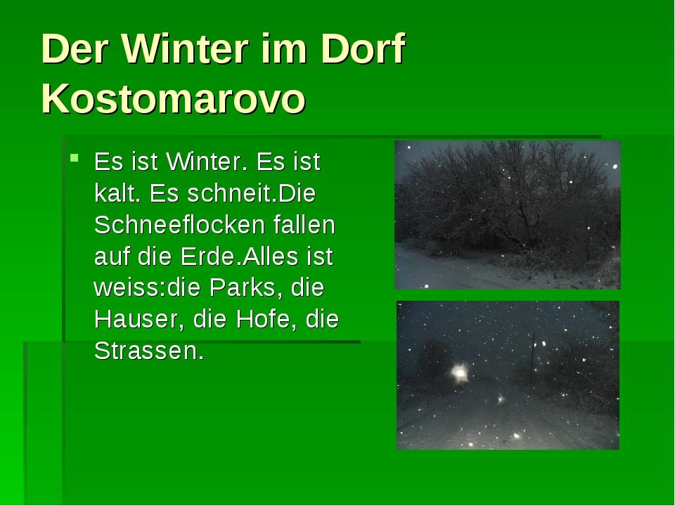 Der Winter im Dorf Kostomarovo Es ist Winter. Es ist kalt. Es schneit.Die Sch...
