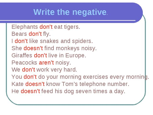 Write the negative. Elephants don't eat tigers. Bears don't fly. I don't like...
